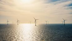 Sun rising on offshore wind farm