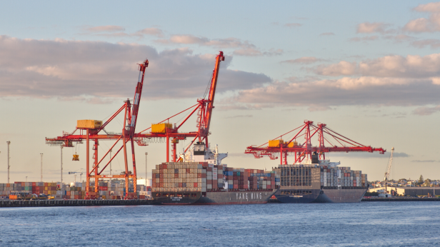 Cargo boats and cranes