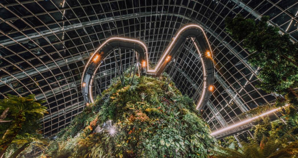 Looking up at Gardens by the Bay in Singapore
