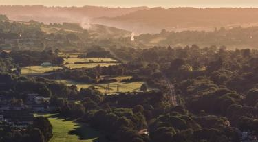 aerial view of green fields and trees
