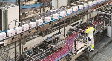 View of the Danone factory showing hundreds of bottles being processed and boxed