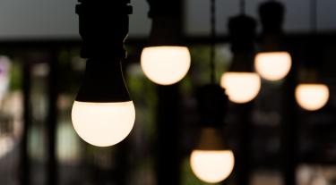 picture of hanging light bulbs