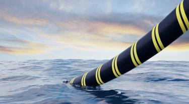 a black and yellow striped cable in the sea
