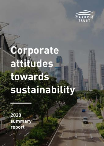 Corporate attitudes towards sustainability cover