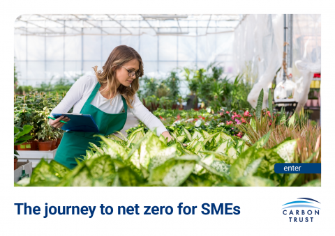 Report front cover - The journey to net zero for SMEs