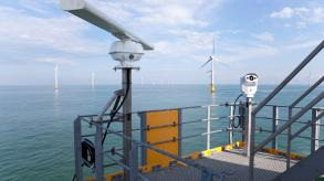 Offshore wind farm - bird collision study