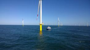 Windfarm in German bight